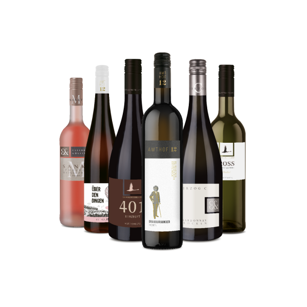 6er Paket - Wine & Music Live Tasting am 25.06.2021 19:30 Uhr auf Youtube